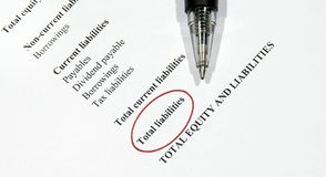 Total liabilities. This is an image of financial statement Royalty Free Stock Images