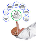 Total Quality Management Principles. Presenting Total Quality Management Principles Stock Images