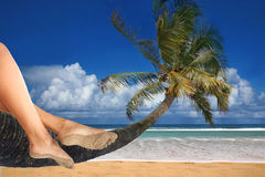 Total Relaxation at the Beach. Woman Dangling Her Feet While Sitting on a Palm Tree Overlooking the Ocean royalty free stock images