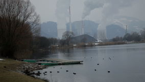 Total shot of the lake with ducks in front of the factories stock footage