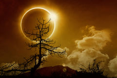 Total solar eclipse in dark glowing sky. Amazing scientific background total solar eclipse, mysterious natural phenomenon when Moon passes between planet Earth Stock Image