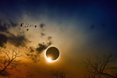 Total solar eclipse in dark red glowing sky royalty free stock photography