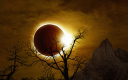 Total solar eclipse in dark glowing sky. Total solar eclipse, mysterious natural phenomenon when Moon passes between planet Earth and Sun, silhouette of withered Stock Images