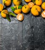 Totalité et tranches de mandarines avec le feuillage photos libres de droits