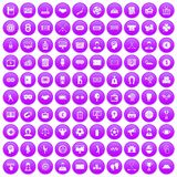 100 totalizator icons set purple. 100 totalizator icons set in purple circle isolated vector illustration Stock Photo