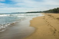 A totally empty sandy beach just south of Puerto Viejo de Talamanca in Costa Rica, footprints leading off into the royalty free stock photo