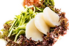 Totate sashimi royalty free stock photography