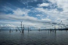 Tote Bäume, die aus dem Wasser heraus am See Kariba haften Lizenzfreies Stockfoto