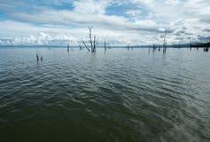 Tote Bäume, die aus dem Wasser heraus am See Kariba haften Lizenzfreie Stockbilder