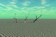 Tote Bäume und Wüste Stockfoto