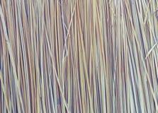 Tote Blätter des asiatischen Palmyrapalmebaumhintergrundes lizenzfreie stockfotografie