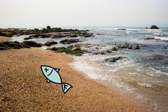 Tote Fische an der Küste lizenzfreies stockbild