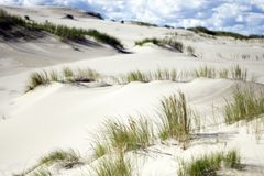 Tote Sanddünen mit Gras Stockbilder