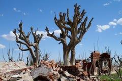 Tote Stadt in Argentinien Stockfotos