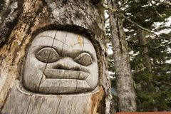 Totem Face in Tree Stock Photo