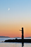 Totem pole and crescent moon Stock Photo