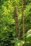 Totem pole in jungle. Totem pole in a green jungle Stock Photo