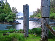 Totem storici, Ninstints, Haida Gwaii, Fotografia Stock Libera da Diritti