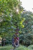 Totempålar i Stanley Park Vancouver arkivfoton