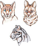 Totems - wild cats with solar signs Royalty Free Stock Photos