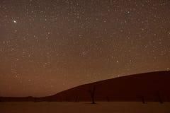 Totes Vlei, Namibia an der Dämmerung Lizenzfreies Stockbild