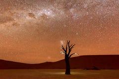 Totes Vlei, Namibia an der Dämmerung Stockbild