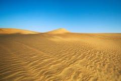 Totes Vlei, Sossusvlei, Namibische Wüste Lizenzfreie Stockfotografie