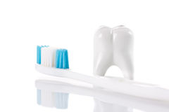 Toth and toothbrush Stock Images