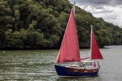 TOTNES, DEVOV/UK - 29 JULI: Het varen op het Rivierpijltje dichtbij Totn Stock Fotografie