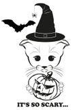 Totono i Halloween Obraz Stock