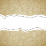 ToTorn paisley  paper. Royalty Free Stock Photos