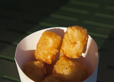 Tots. Takeout box of tator tots Royalty Free Stock Photo