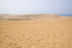 Tottori beach Royalty Free Stock Image