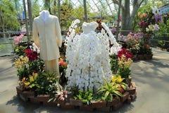 Tottori Hanakairo Flower Park, wedding dress of orchids Royalty Free Stock Photo