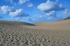 Free Tottori Sand Dunes In Summer,Japan Stock Photo - 124370720