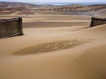 Tottori sanddyn arkivfoton