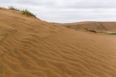 Tottori sanddyn royaltyfria foton