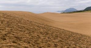 Tottori sanddyn i Japan royaltyfri fotografi