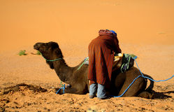 Touareg and camel Royalty Free Stock Image