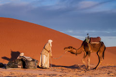 Touareg man with camel. A Tuareg man with his camel. Sahara desert. Border region of Morocco and Algeria Stock Photos