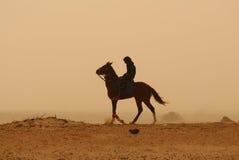 Touareg que vagueia através do Sahara Fotos de Stock