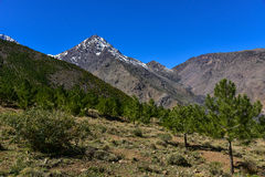 Toubkal national park. Morocco, High Atlas Mountains, the foothills of Toubkal National Park Royalty Free Stock Photography