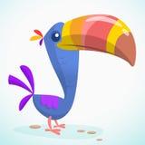 Toucan动画片 查出的向量例证 免版税库存照片