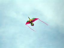toucan的风筝 图库摄影