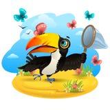 Toucan με τις πεταλούδες διανυσματική απεικόνιση