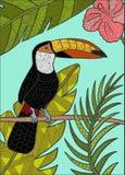 Toucan детализировало иллюстрацию Стоковые Фотографии RF