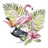 Toucan и фламинго с тропическими цветками и лист Элемент для дизайна приглашений, киноафиш, тканей и другой стоковое изображение rf