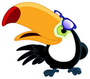 Toucan. Cartoon toucan wearing his sunglasses Stock Photo