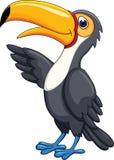 toucan的动画片 免版税图库摄影