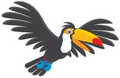 Toucan royaltyfri illustrationer